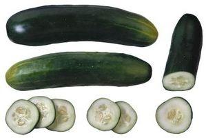 Hvordan at vokse store agurker