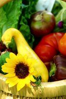 De bedste økologiske grøntsagsfrø