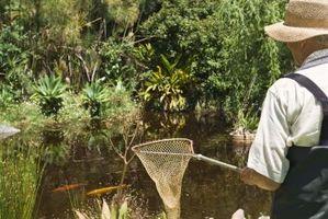 Hvordan til at grave en dam i Indiana