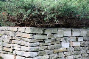 Væg byggeteknikker