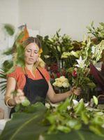 Hvordan man kan skære blomster skum