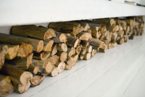 Hvad slags brændstof bruges til at opvarme dit hjem?