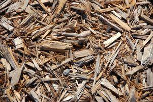 Sådan Sammenlign fyrretræ Bark & cedertræ barkflis