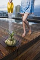 Vand fra hanen vs renset vand for planter