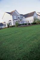 Hvordan man behandler en forfrossen græsplæne