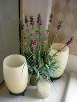 Hvordan man kan dekorere et badeværelse billigt