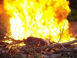 Virkninger på jord efter skovbrandene