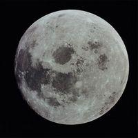 Sådan transplantation efter månen