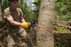 Sådan motorsav et skæve træ