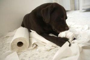 Hvordan til at konstruere en toiletpapir kabinet