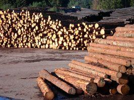 Hvordan opbygger jeg en tømmer huset ved hjælp af træer?