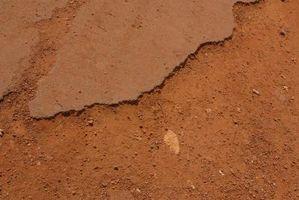 De bedste planter til erosionskontrol