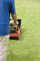 Hvordan man kan skære Diagonale linjer på din græsplæne