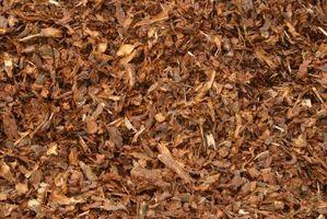 Er cedertræ barkflis godt for haver?