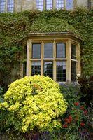 De bedste nuancer for store vinduer