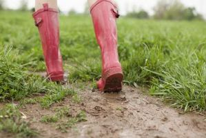 Sådan Fix en mudret græsplæne